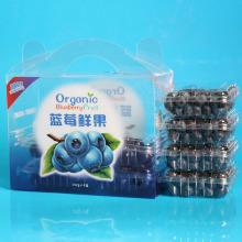 Boîte en plastique d'emballage de fruit d'impression faite sur commande en gros d'usine (sac de légume)