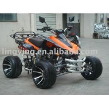 250CC EEC ATV (LYDA203E-6)