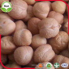 Chick Peas secos 12 mm Kabuli Garbanzos