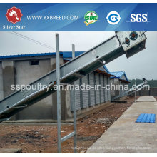 192-288 Capacity Layer Cage for Big Farm