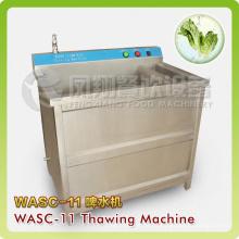 Máquina de descongelación y descongelación de la carne congelada que se lava con la función de la calefacción