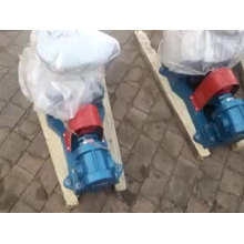 2CY small oil gear pump food/ Industrial oil transfer pump