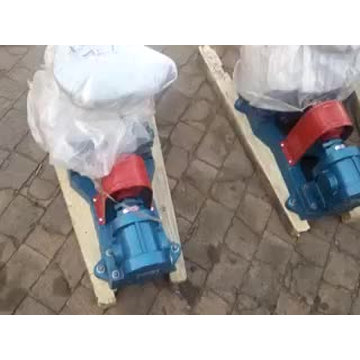 Bomba de transferencia de aceite de girasol bomba de aceite de girasol bomba de engranajes de acero inoxidable serie 2CY