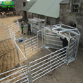 hot sale galvanized or pvc coated horse fence
