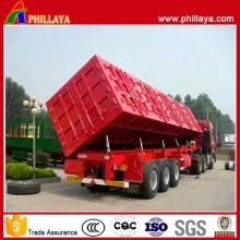 3 Achsen Seite hydraulische Hub-Container Typ Cargo Kippanhänger