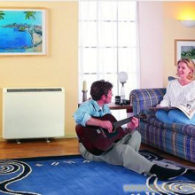 Static Heat Storage Electric Radiator