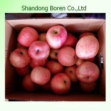 Wholesale 2015 New Fresh FUJI Apple