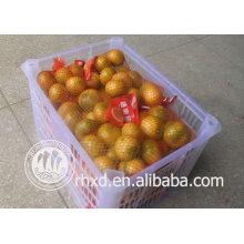 Sweet Baby Mandarin Orange peeled