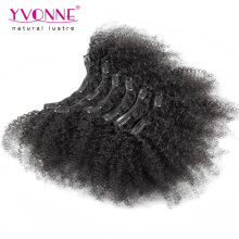 Brazilian Afro Kinky Curly Clip in Hair Extensions