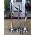 Stainless Steel Engine Parts Engine Valve