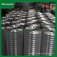 cheap and high quality hot-dipped welded wire mesh(factory since 1990)