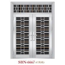 Puerta de acero inoxidable para sol exterior (SBN-6667)