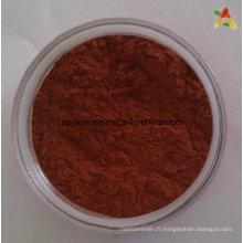 Poudre d'extrait de peau de raisin Resveratrol