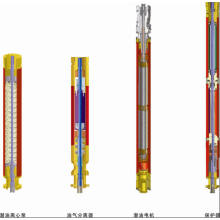 Vertical three phase asynchronous submersible motor