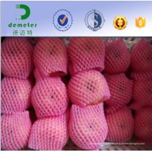 China Berufshersteller und Exporteur-umweltfreundliches ungiftiges Nahrungsmittelgrad-Schaum-Ineinander greifen-Netz