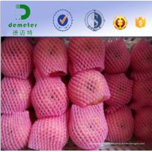 China Profesional fabricante y exportador respetuoso del medio ambiente no tóxico Food Grade malla red