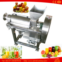 Pequeño Apple Ginger Watermelon Production Jugo de fruta que hace la máquina