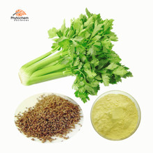 Supplement Capsules Powder Celery Seed Extract Apigenin 98% Celery Seed/Leaf Extract Powder