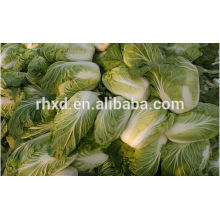 top quality fresh celery cabbage