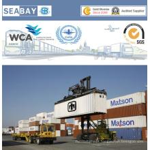 Transporte marítimo confiável de FCL / LCL da China para a Bélgica