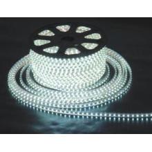 Tira de luz LED110V Luz LED LED
