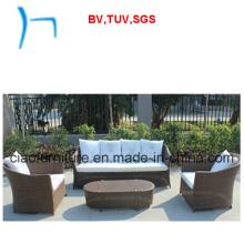 F- Outdoor Garden Leisure Aluminum Rattan Sofa (CF1305A+CF1305b+CF1305CT)