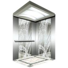 Fjzy-Elevator (FJ8000-1) Elevator Passenger Fjzy-209