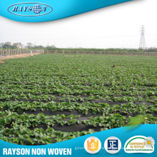 Hot Sale High Quality Black Plastic Agriculture Mulch Film