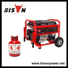 BISON (CHINA) Marca superior Potência de saída real LPG 4000Watts Gerador de metano do biogás