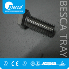Grade 4.8 Stainless Steel Hex Bolt And Nut