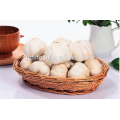 Vente chaude 4.5 cm 5.0 cm 5.5 cm 6.0 cm chinois frais ail blanc pur normal ail blanc