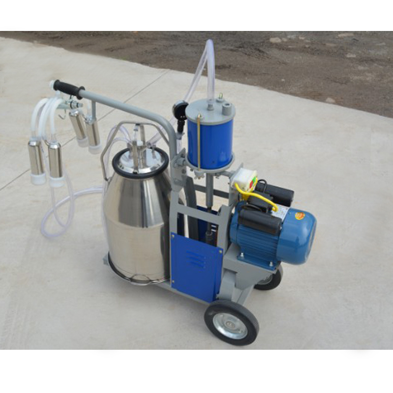 milking machine with 2 barrels