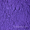Holi Color Powder Roxo Cor Festival Cores