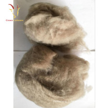 Laine de mouton de laine de cachemire brute à vendre