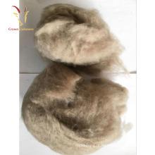 Lã Crua dos carneiros da fibra de lãs da caxemira para a venda
