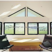 Fenêtre fixe architecturale (W-FX48)