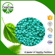 NPK Water Soluble Fertilizer 19-9-19+Te Fertilizer Manufacturer