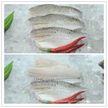 high quality Skin on/PBO sea bass fillets