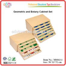 Montessori Ayudas Didácticas Gabinete de Geometría y Botánica Recursos Didácticos