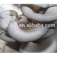 Fornecimento de fábrica orgânica polissacarídeo de cogumelo-ostra