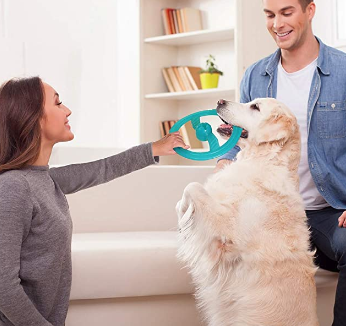 Flying Disc Pet Toys