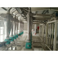 300tons ng Wheat Flour Mill Machine Building Structure