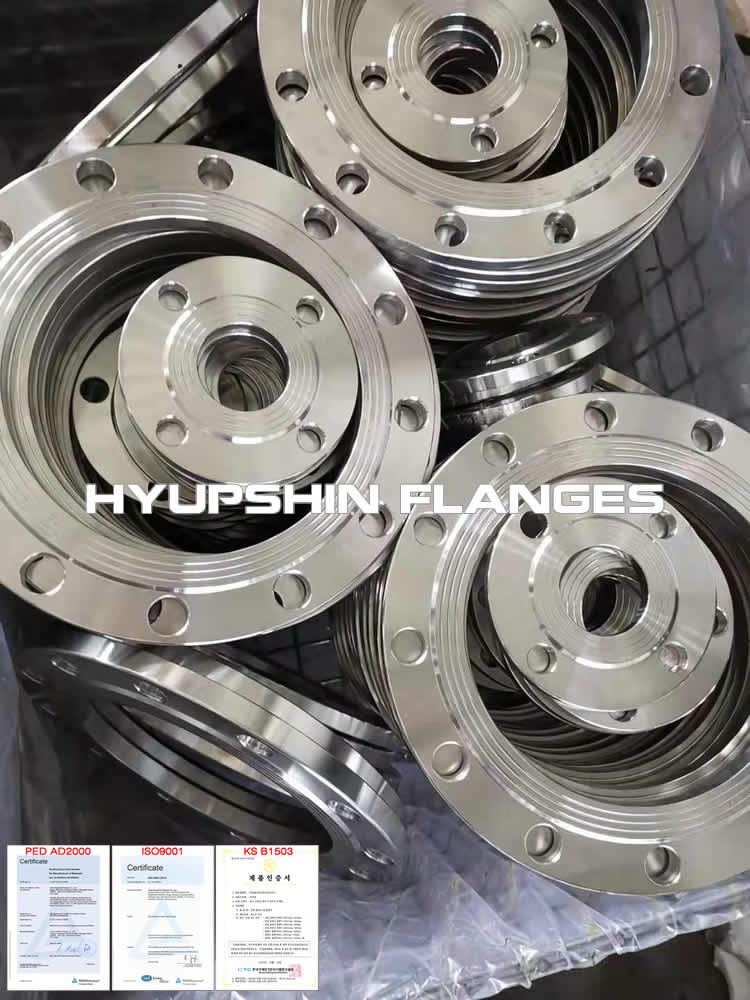 Hyupshin Flanges Stainless Steel 304 316 1 4301 1 4404