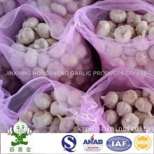 5.0cm Normal White Garlic 10kg Mesh Bag Packing