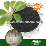 Agriculture Fertilizers ,Seaweed Organic Fertilizer ,100% Water Soluble Fertilizer