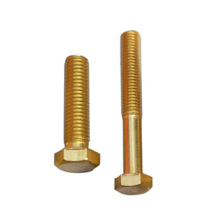 Brass decorative screw wooden screws
