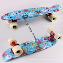 Cruiser Skateboard with New Style (YVP-2206-5)