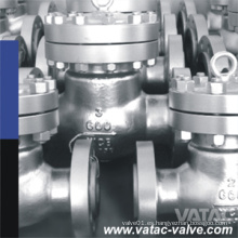 Válvula de retención de acero fundido BS1868