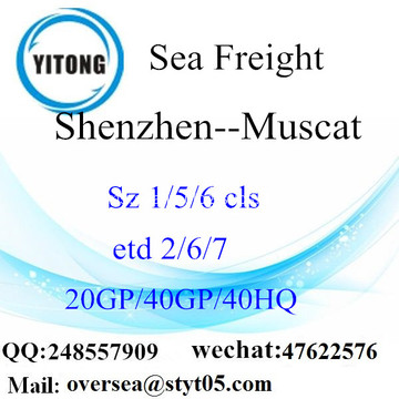 Shenzhen Port Sea Freight Shipping ke Muscat