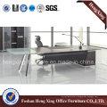 Metal Structure Fashion Desk Office Table Executive Desk (HX-6M015)